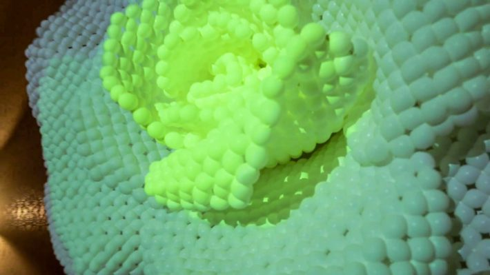 daisyballoon-tanjc-00007